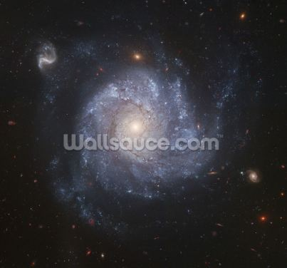 Full ACS Field of NGC 1309 Wallpaper Wall Murals