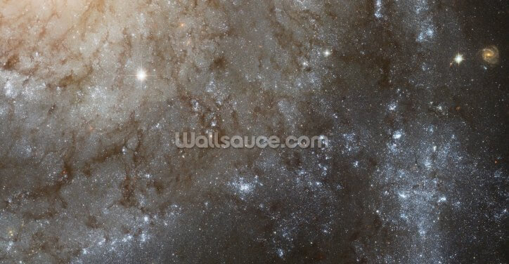 A Detailed Look at Spiral Galaxy M101 Wallpaper Wall Murals
