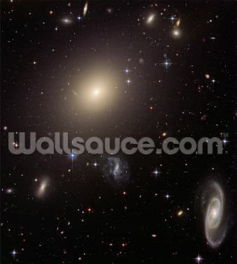 Hubble Illuminates Cluster of Diverse Galaxies Wallpaper Wall Murals