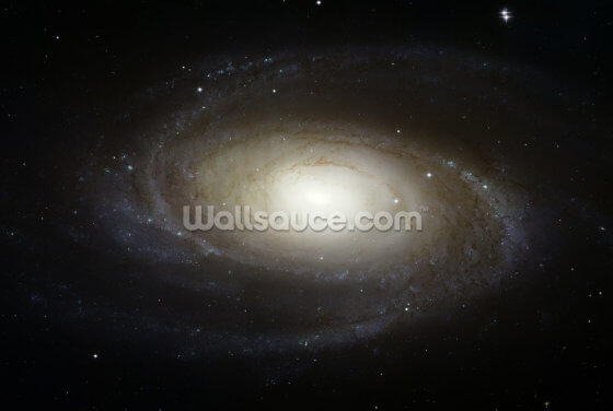 Grand Design Spiral Galaxy M81 Wallpaper Wall Murals