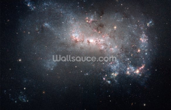 Stellar Fireworks Are Ablaze in Galaxy NGC 4449 Wallpaper Wall Murals