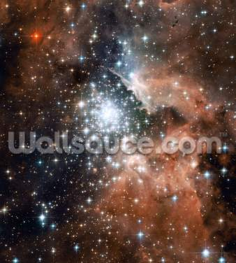 Full Hubble ACS Image of NGC 3603 Wallpaper Wall Murals