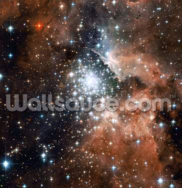 Star Cluster Bursts into Life in New Hubble Image Wallpaper Wall Murals