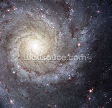 Spiral Galaxy M74 Wallpaper Wall Murals
