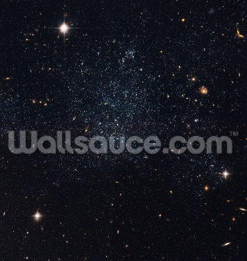 Dwarf Galaxy Holmberg IX Wallpaper Wall Murals