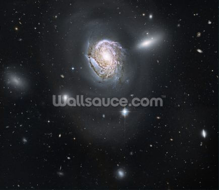 "An ""Island Universe"" in the Coma Cluster Wallpaper Wall Murals"