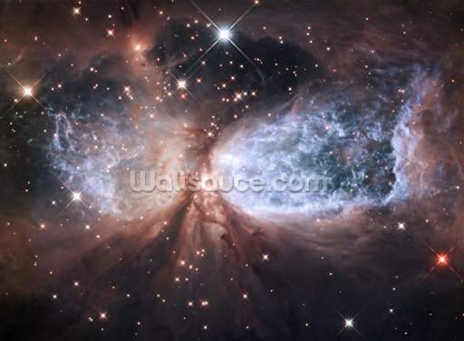 Star-Forming Region S106 Wallpaper Wall Murals