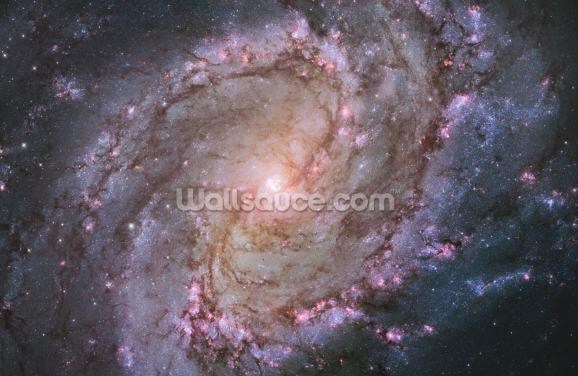 Spiral Galaxy M83 Wallpaper Wall Murals