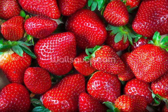 Strawberries Fresh Wallpaper Wall Murals