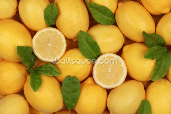 Zesty Lemons Wallpaper Wall Murals