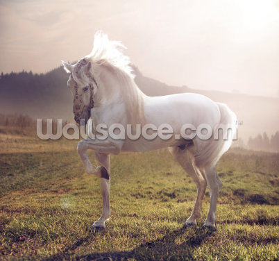 Fairytale White Horse Wallpaper Wall Murals