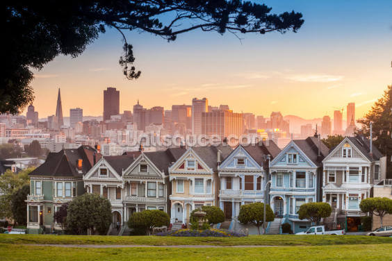 San Francisco Alamo Square Wallpaper Wall Murals