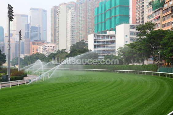Hong Kong Racecourse Wallpaper Wall Murals