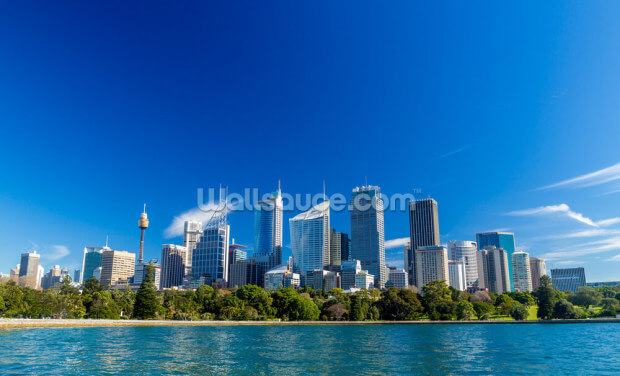 Downtown Sydney, Australia Wallpaper Wall Murals