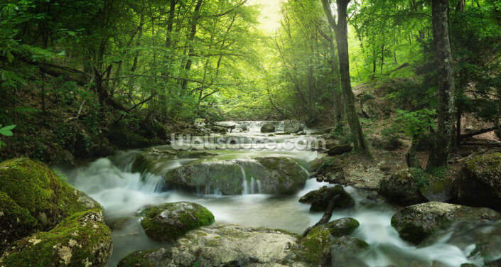 Enchanting Forest Waterfall Wallpaper Wall Murals