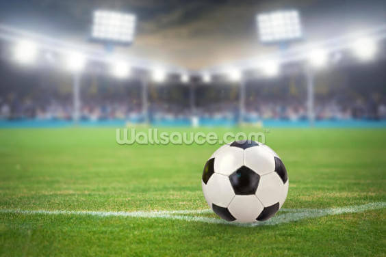 Football Stadium and Football Wallpaper Wall Murals