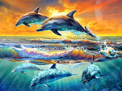 Dolphins at Dawn Wallpaper Wall Murals