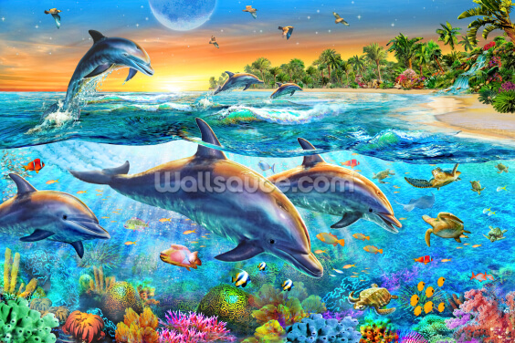Dolphin Bay Wallpaper Wall Murals