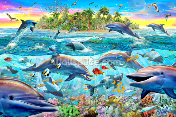 Dolphin Reef Wallpaper Wall Murals