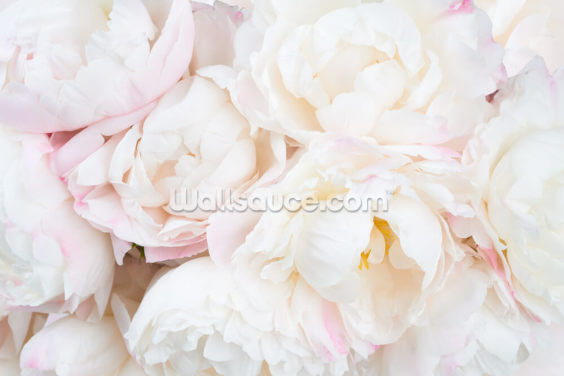 Peony Clouds Wallpaper Wall Murals