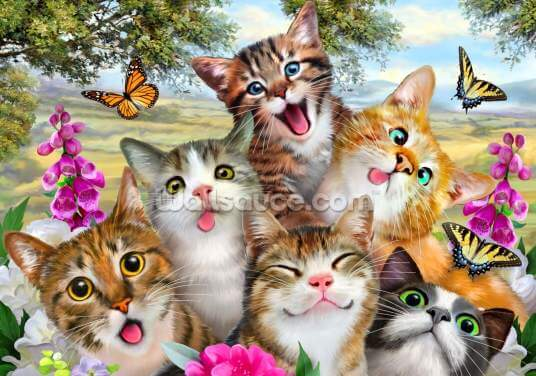 Cat Selfie Wallpaper Wall Murals