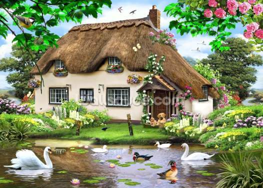 Swan cottage Wallpaper Wall Murals