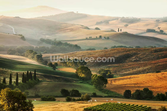 Italian Countryside Wallpaper Wall Murals