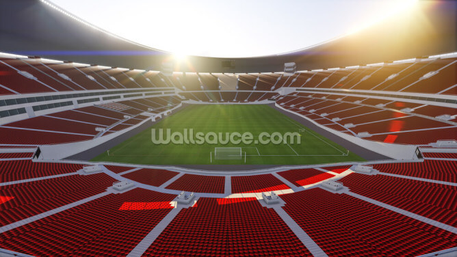 Stadium Wallpaper Wall Murals