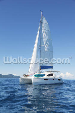 Catamaran at Sea Wallpaper Wall Murals