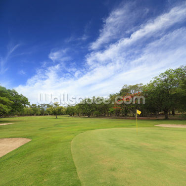 Golf Course Wallpaper Wall Murals