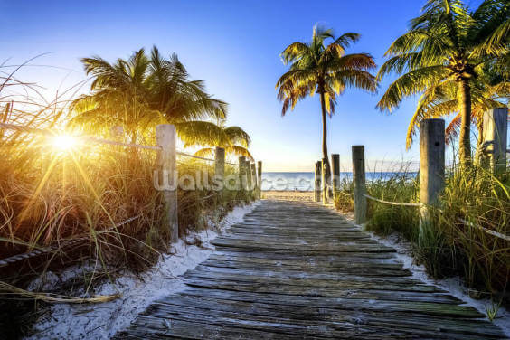 Boardwalk Sunrise Wallpaper Wall Murals