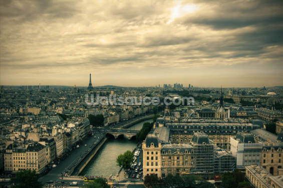 Paris Skyline from Notre Dame Wallpaper Wall Murals