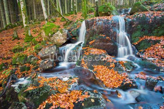Leaves and Waterfall Wallpaper Wall Murals
