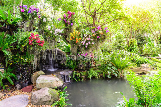 Orchid Garden Waterfall Wallpaper Wall Murals