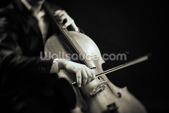The Cellist Wallpaper Wall Murals