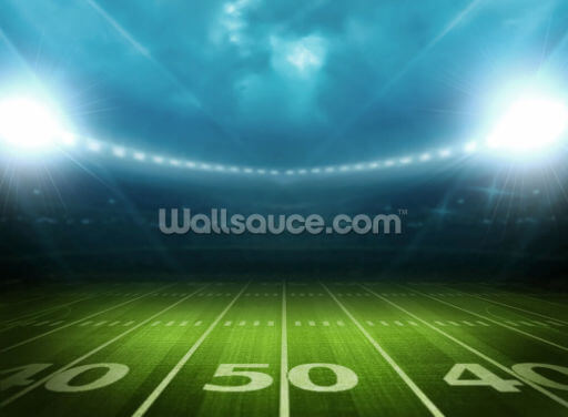 Football Stadium USA Wallpaper Wall Murals