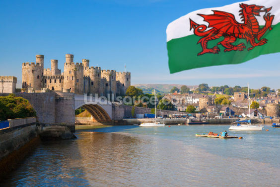 Conwy Castle and Welsh Flag Wallpaper Wall Murals