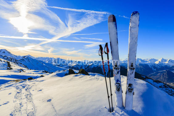 Skis and Pole Sticks Wallpaper Wall Murals