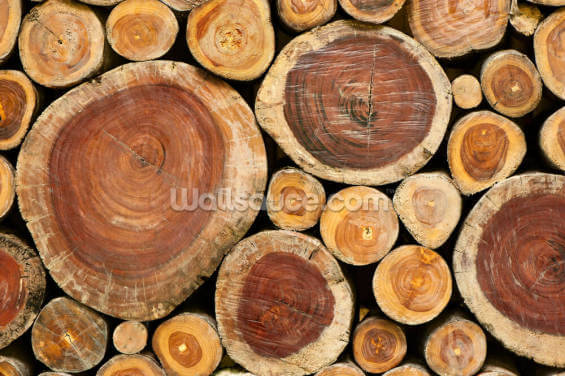 Pile of Logs Wallpaper Wall Murals