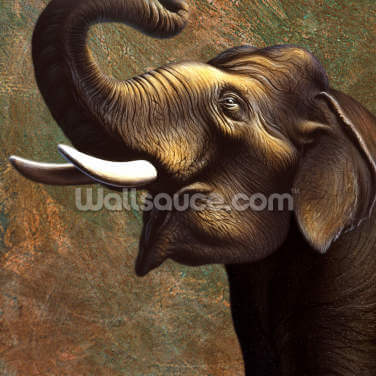 Indian Elephant Wallpaper Wall Murals