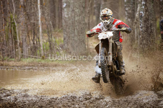 Motocross Madness Wallpaper Wall Murals