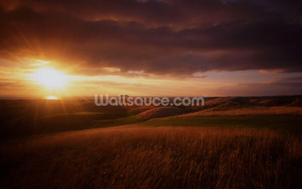 Ballyliffin, Ireland Wallpaper Wall Murals