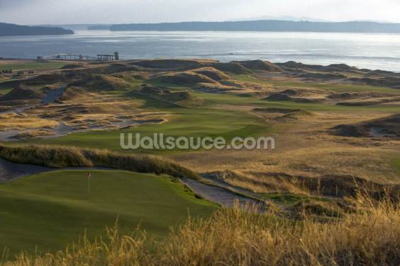 Chambers Bay, USA Wallpaper Wall Murals