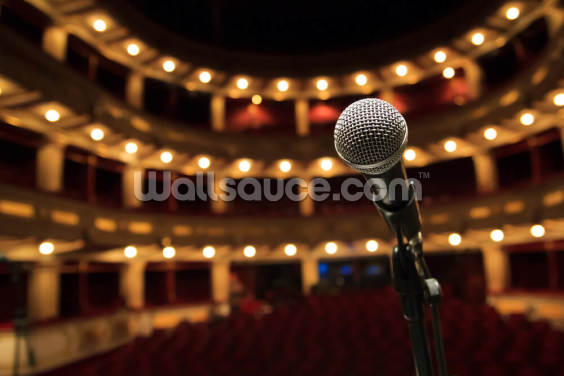 Close Up of Microphone in Concert Hall Wallpaper Wall Murals