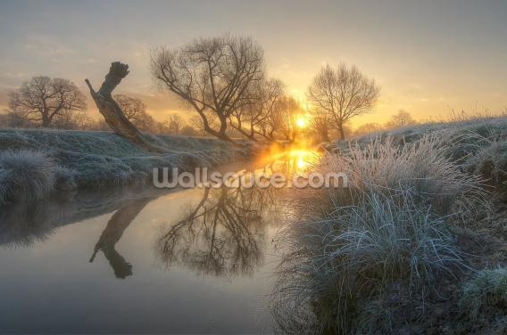 Sunrise Burns the Morning Mist Wallpaper Wall Murals