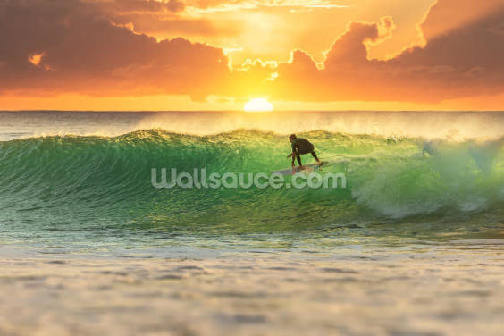 Surfer Surfing at Sunrise Wallpaper Wall Murals