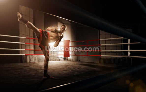 Kick Boxing Wallpaper Wall Murals