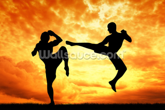 Muay Thai Wallpaper Wall Murals