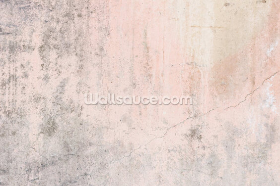 Pale Pink Concrete Wallpaper Wall Murals