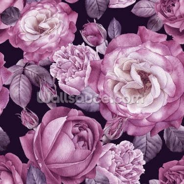 Ultra Violet Roses Dark Floral Wallpaper Wall Murals